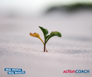 Build a resilient business
